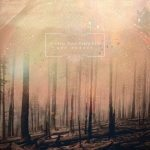 If These Trees Could Talk_Red Forest