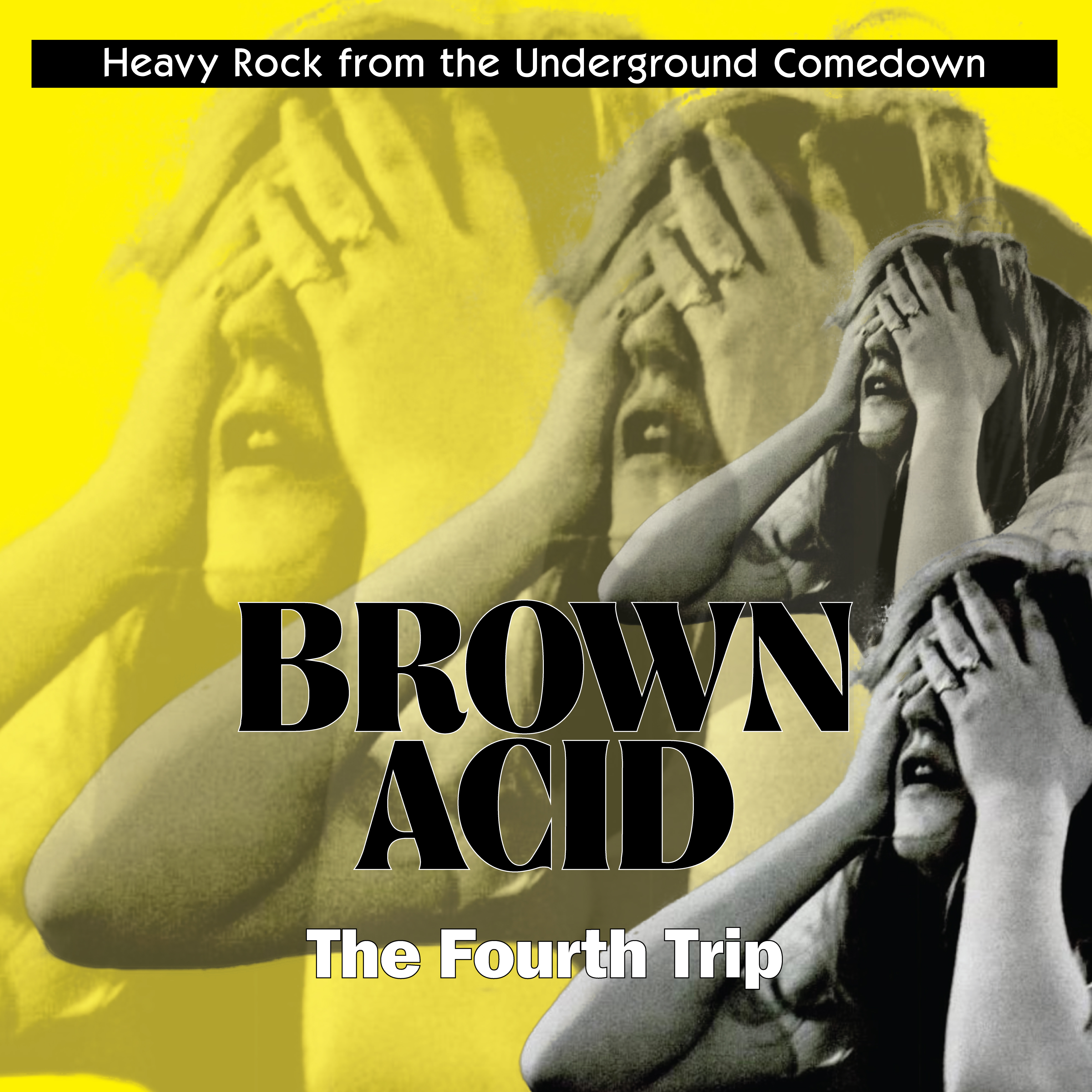 Various Artists Brown Acid The Fourth Trip Echoes